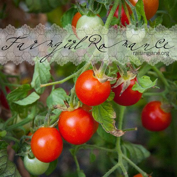 farm_romance-7112