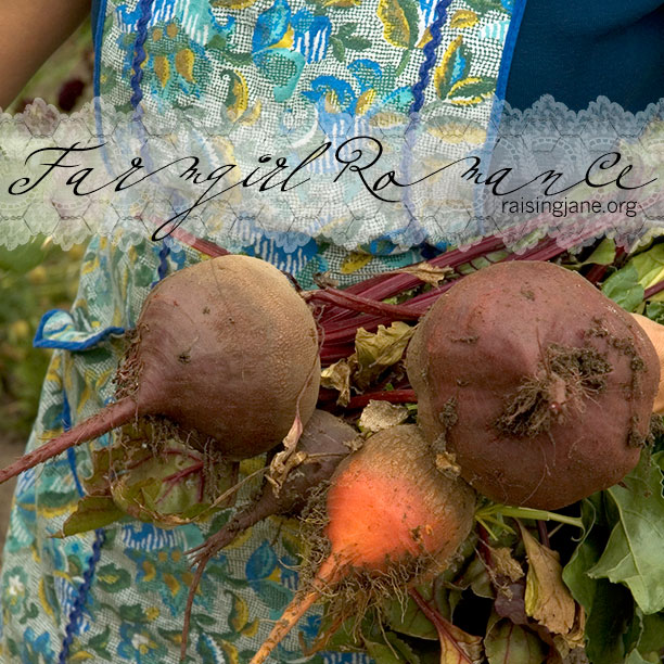photo-of-the-day_apron-beets
