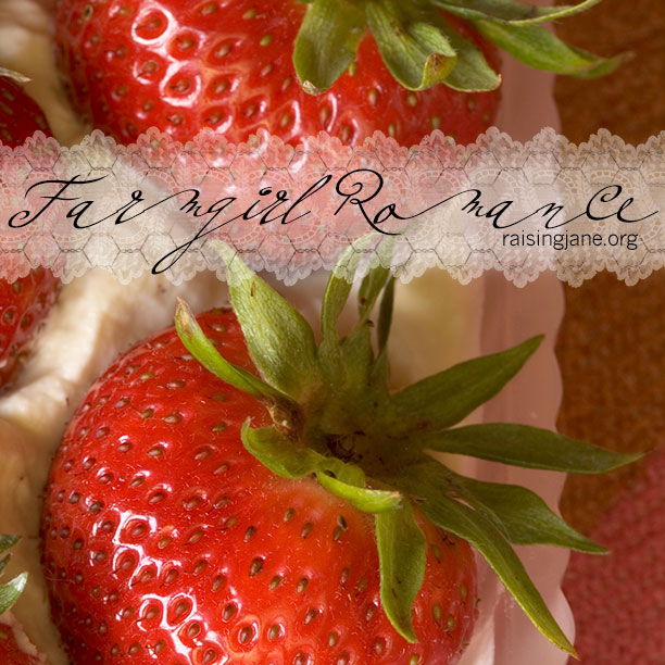 photo-of-the-day_strawberries
