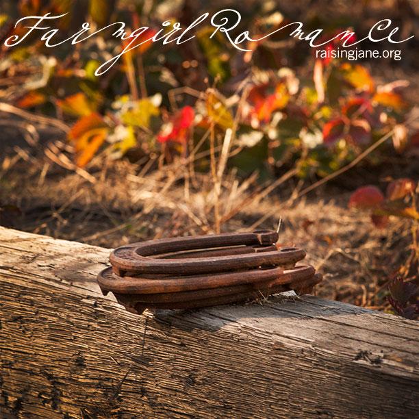 farm_romance-4352