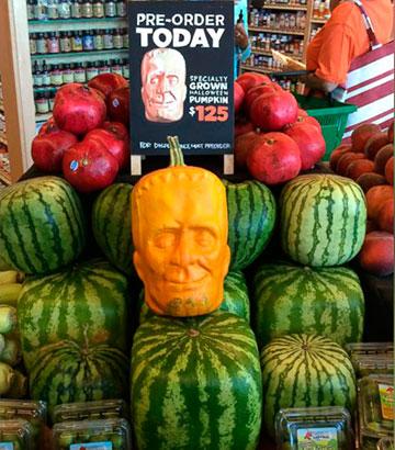 pumpkin-stein2