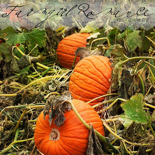 pumpkins_0176