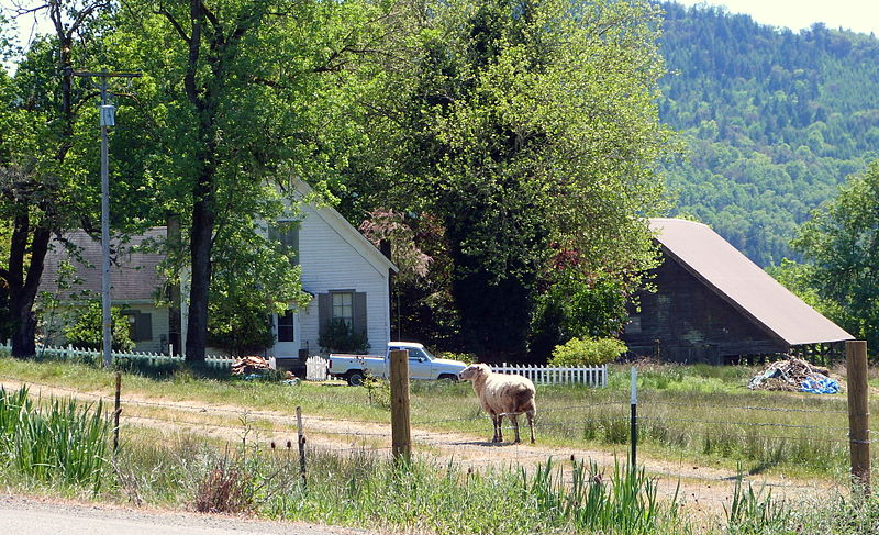 800px-Hurst_Farm_-_Sutherlin_Oregon