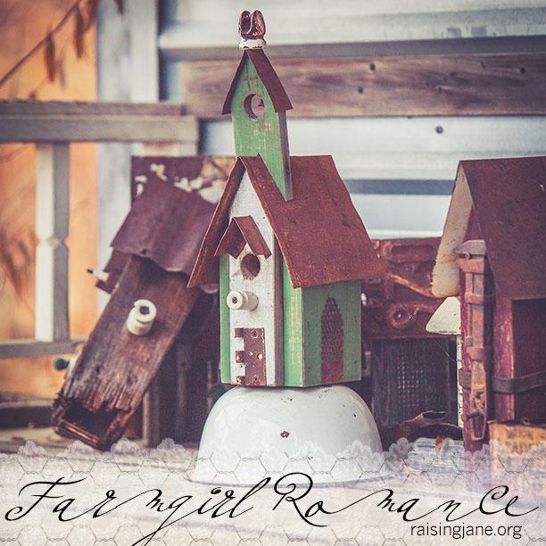 Farm_Romance-6175