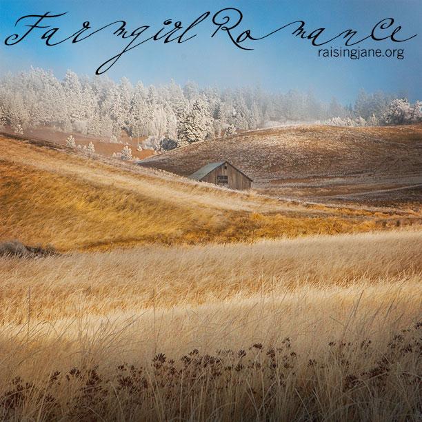 farm_romance-3495