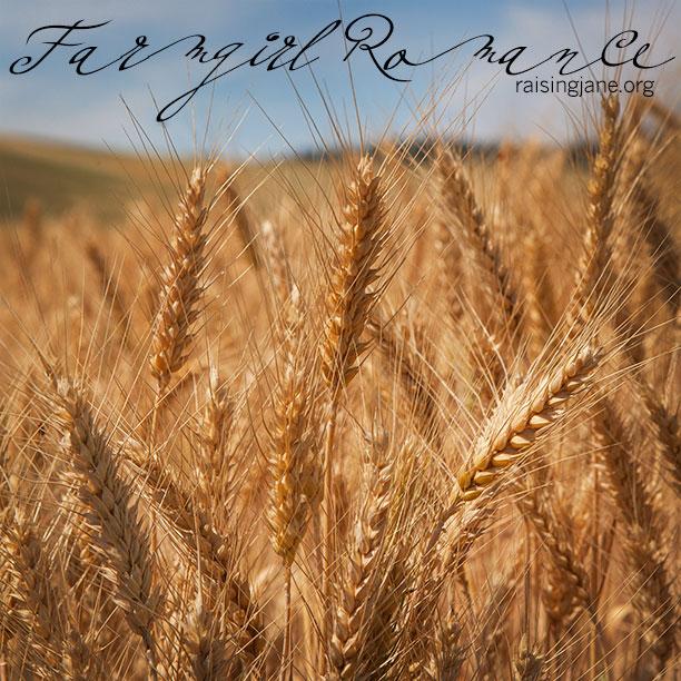farm_romance-7534-2