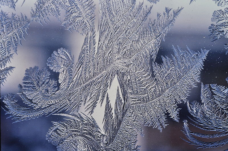 800px-Frost_patterns_4