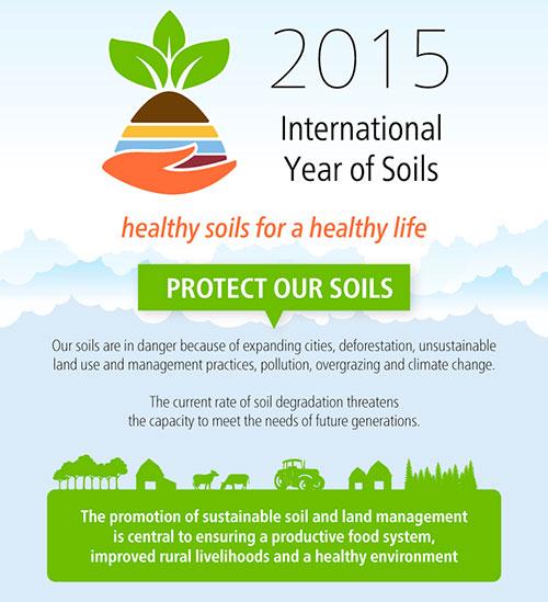 FAO-Infographic-IYS2015-en