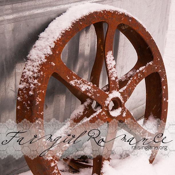 Farm_Romance-6707