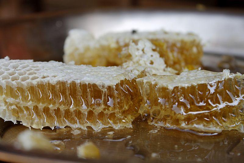 Organic_Honey_(1)
