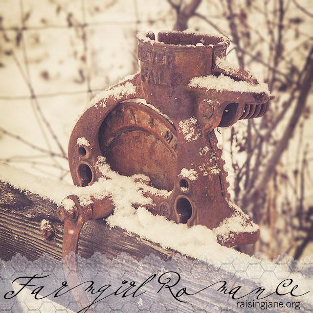 farm_romance-6672-2