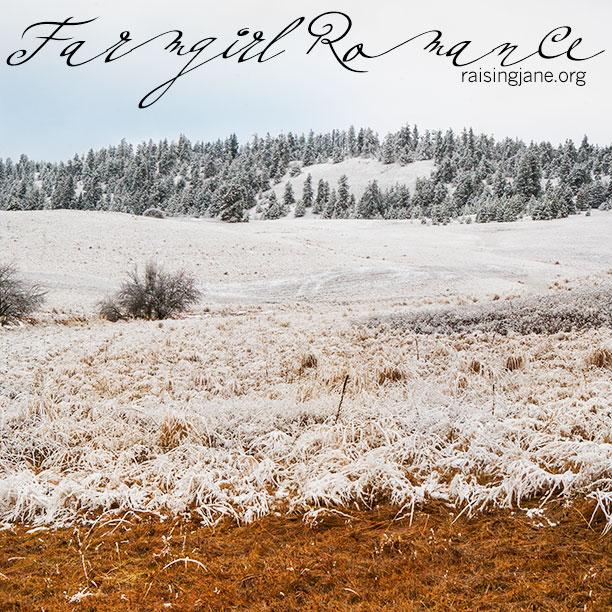 Farm_Romance-7901