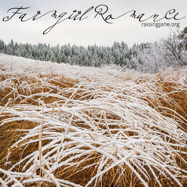 Farm_Romance-7913