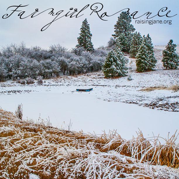 Farm_Romance-7955