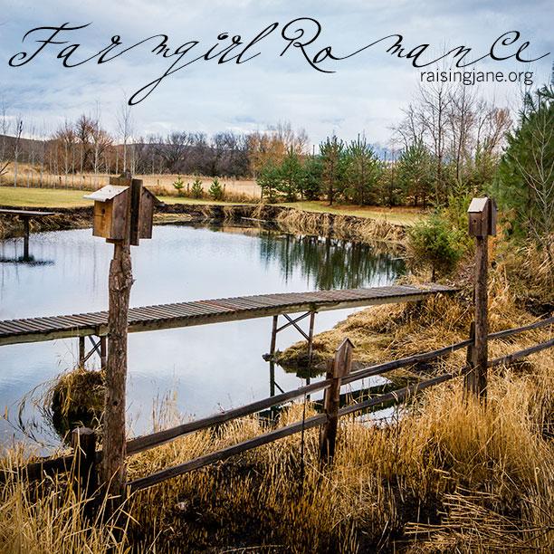 farm-romance-7532