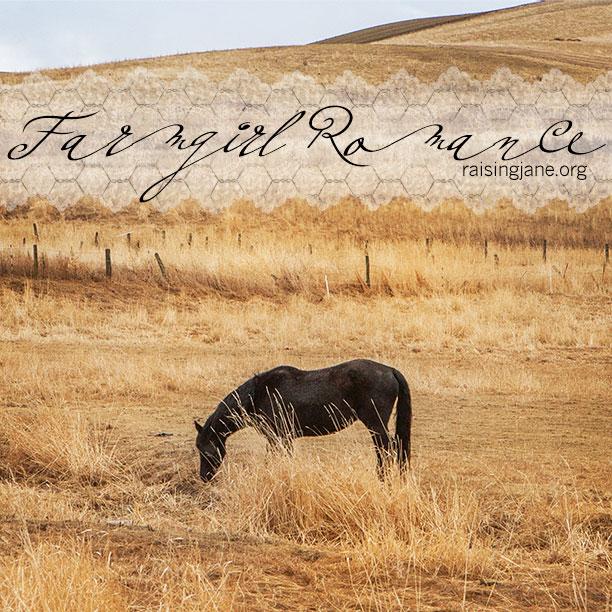 farm-romance-7542