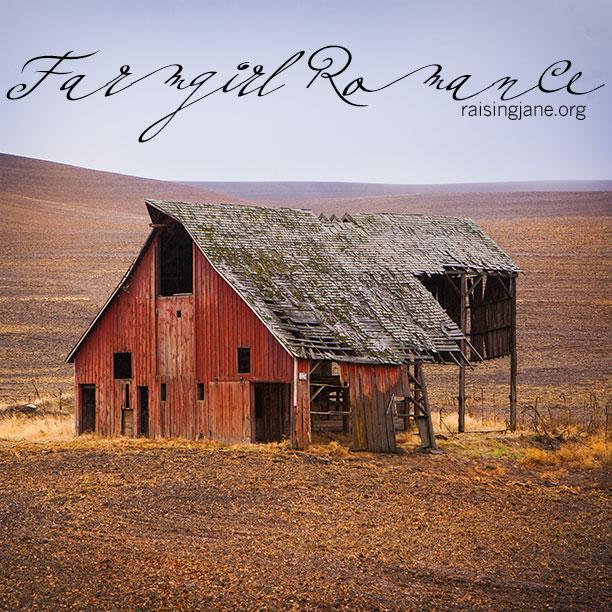 farm-romance-7567