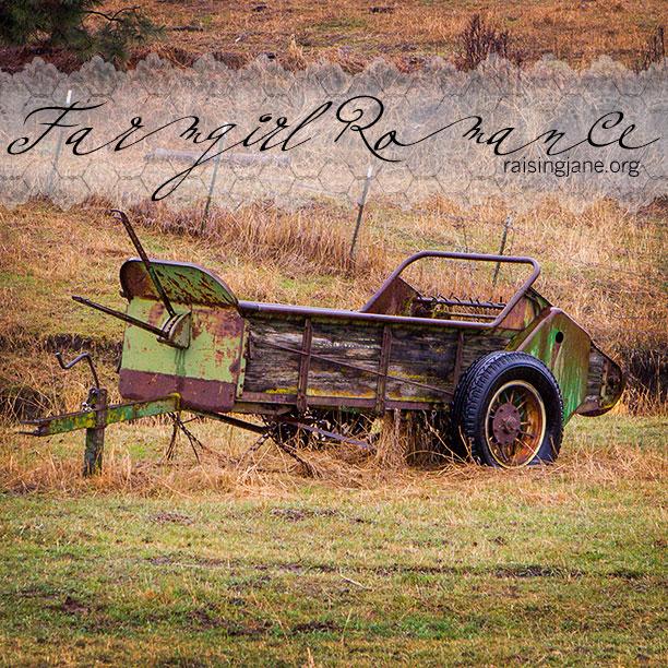 farm-romance-7575