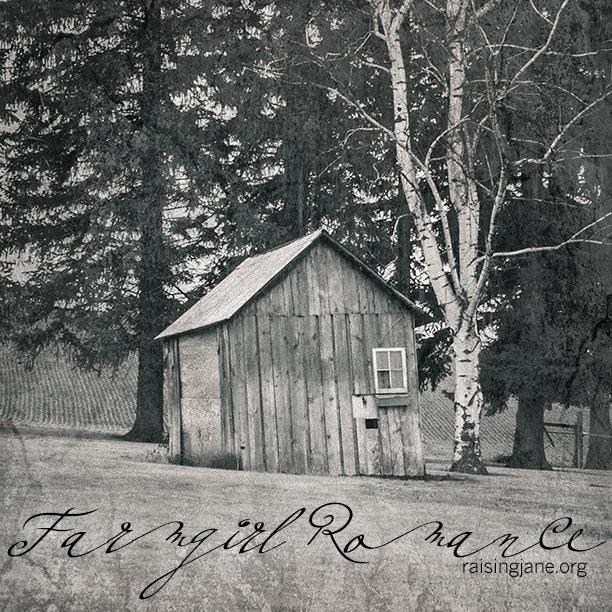 farm-romance-7583