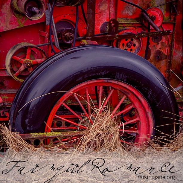 farm-romance-7610