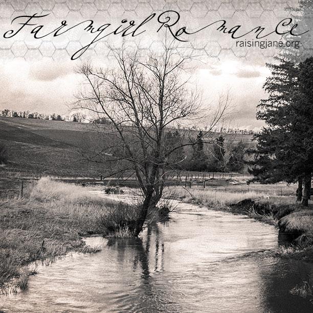 Farm-Romance-7332