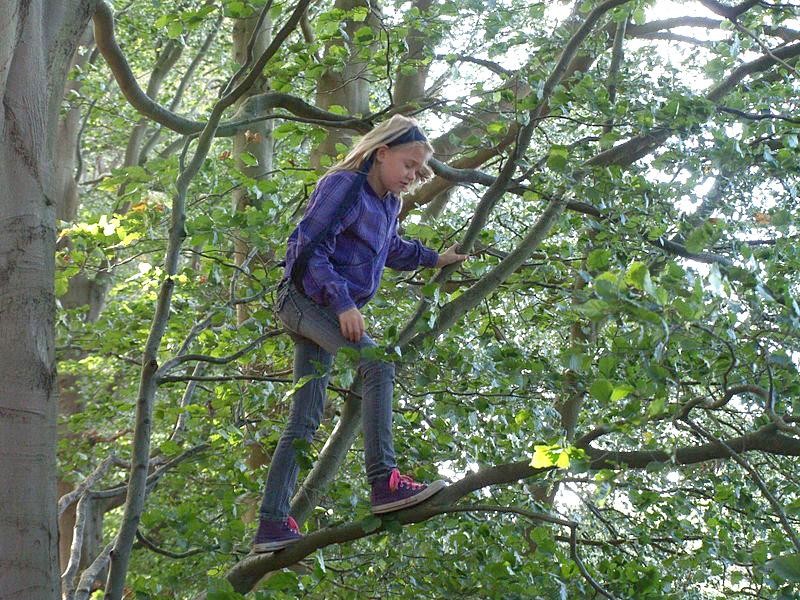 Tree_Girl