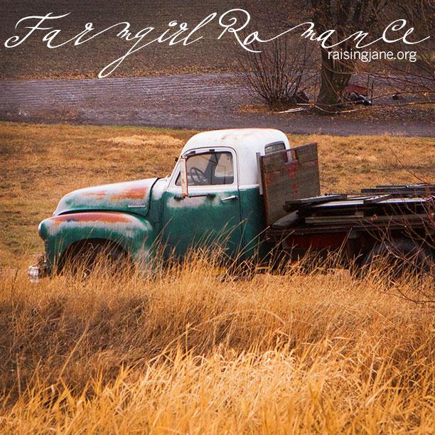 farm-romance-7548