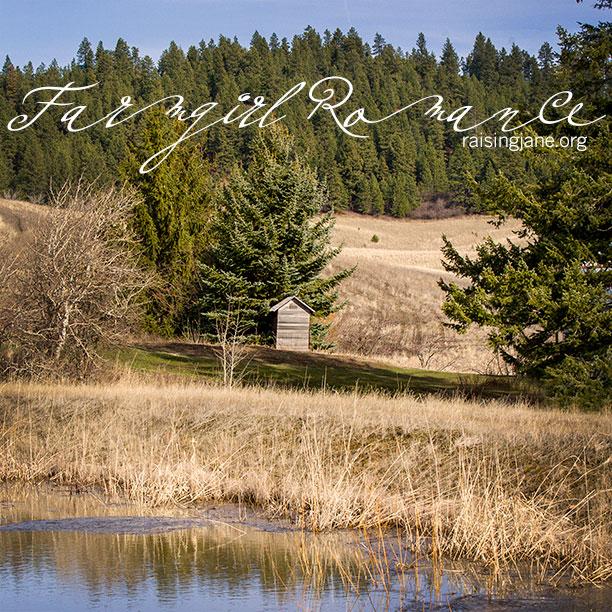 farm-romance-9704