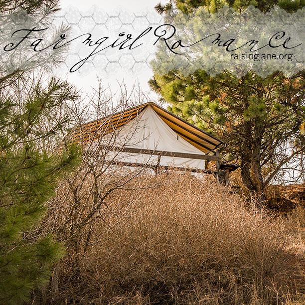farm-romance-9716