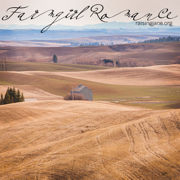 farm-romance-9740