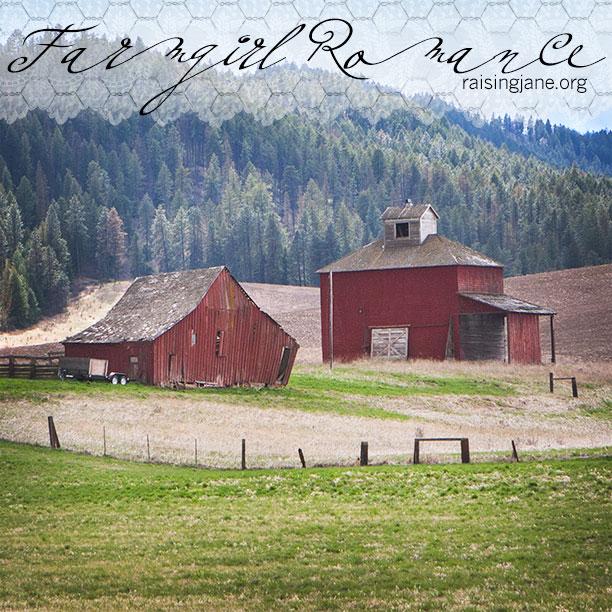 farm-romance_0498