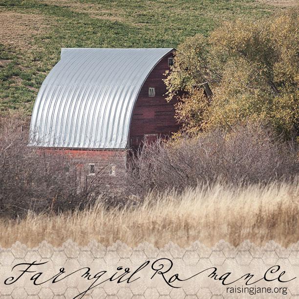 farm-romance_6367