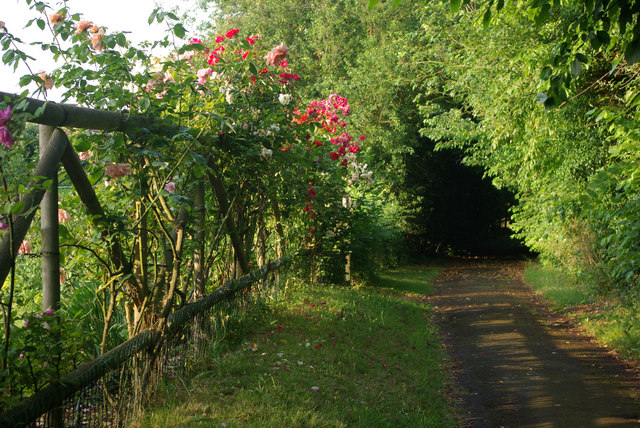 Path_to_the_church,_Lolworth_-_geograph_org_uk_-_1379662