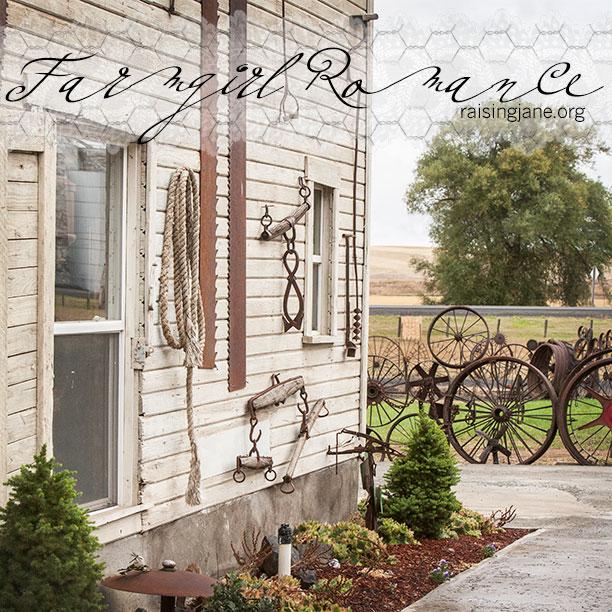 farm-romance_0617
