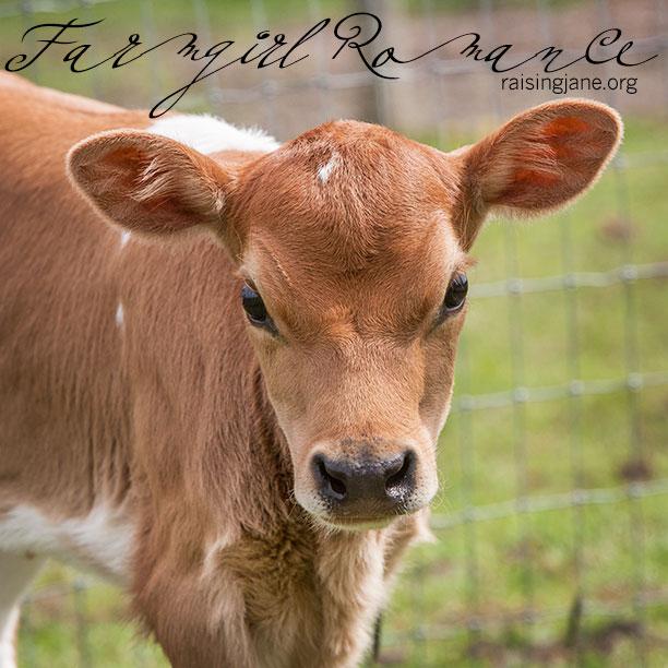 farm-romance_0035