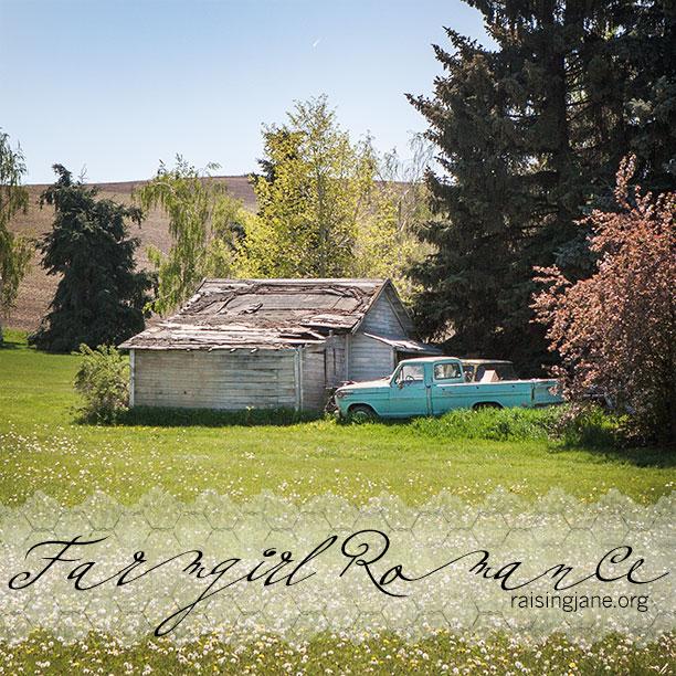 farm-romance-0608
