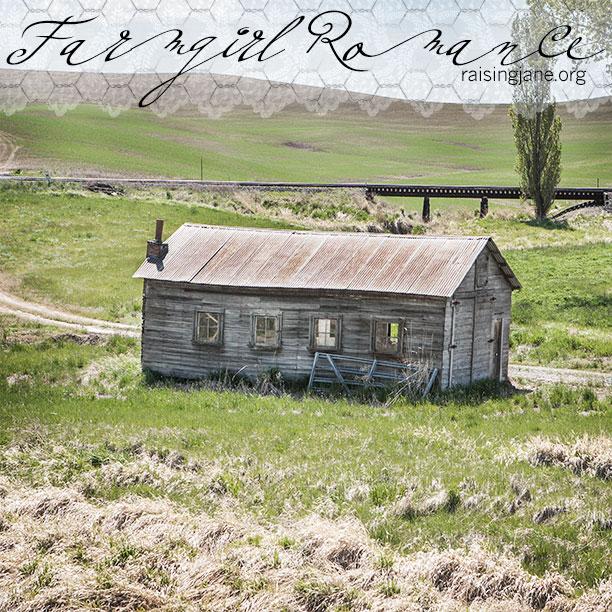 farm-romance-0706