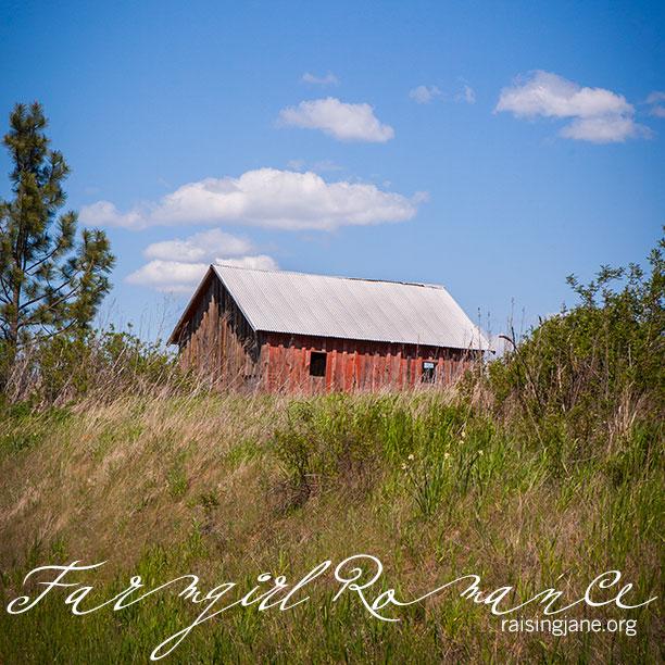 farm-romance-0733