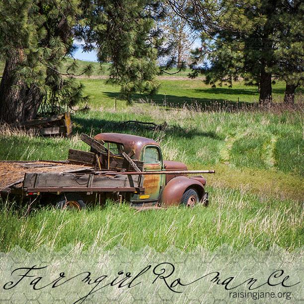 farm-romance-0750