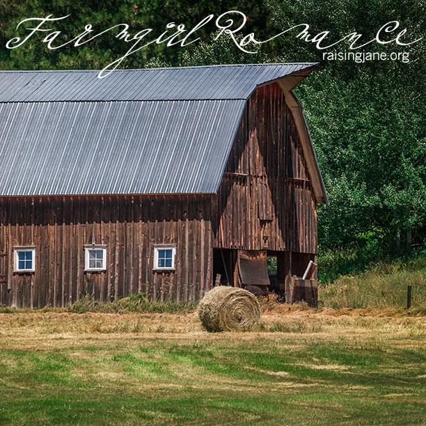 farm-romance-3016