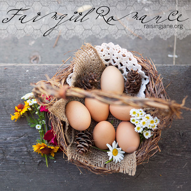 photo-of-the-day-eggs_2730