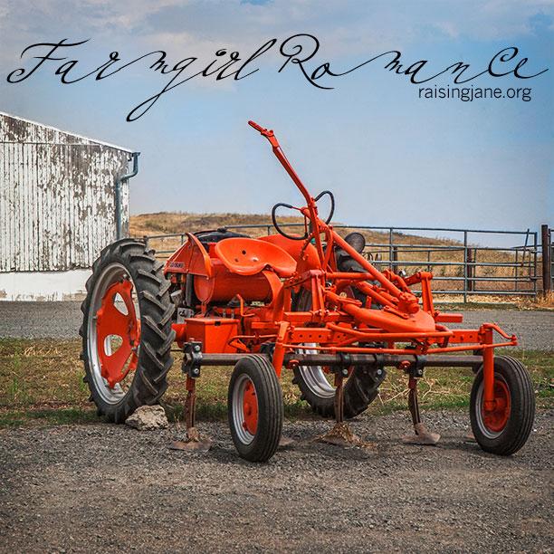 farm-romance-6282