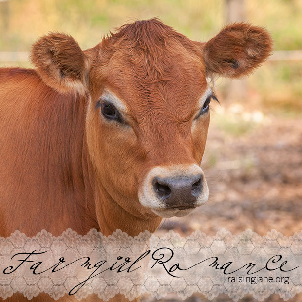 farm-romance_5623