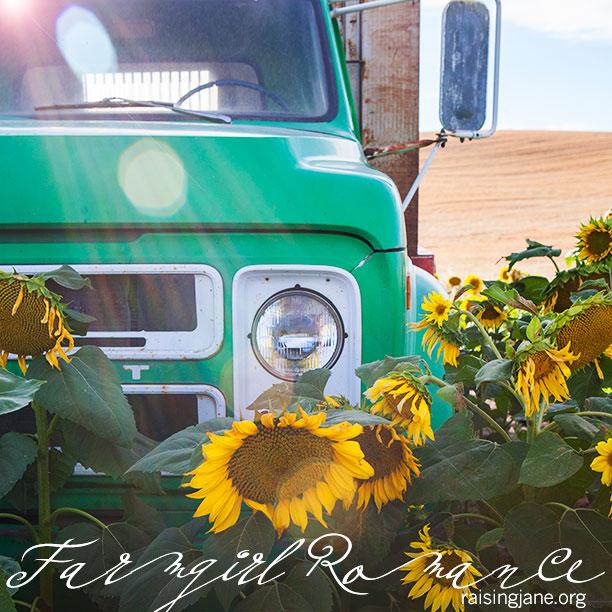 farm-romance_2841