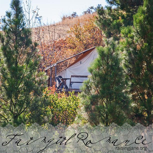 farm-romance_9723
