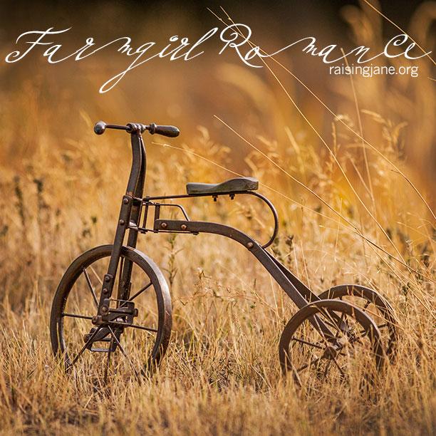 farm-romance-0092