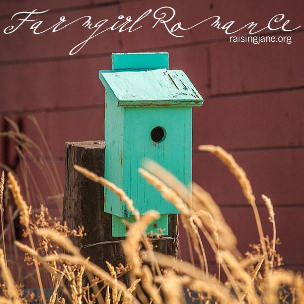farm-romance-0214