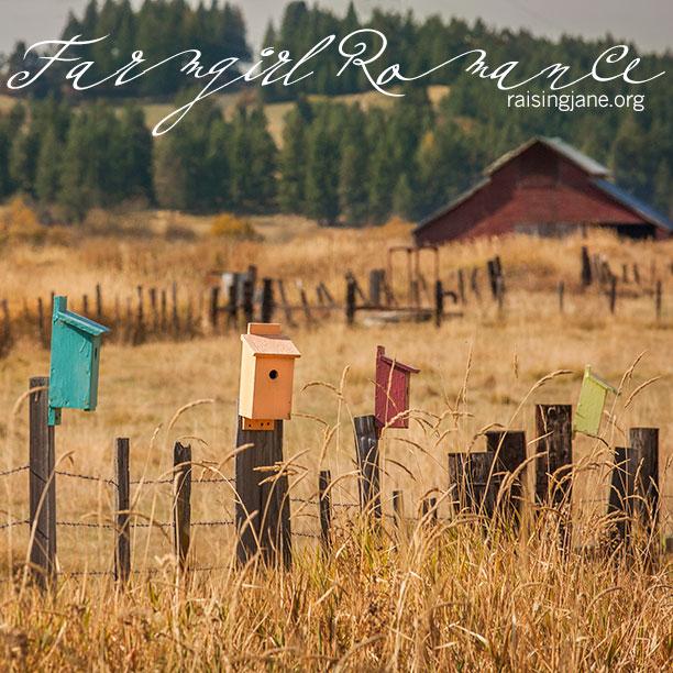 farm-romance-0224