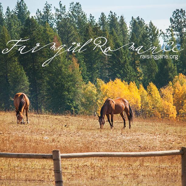 farm-romance-0292