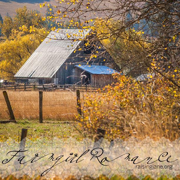 farm-romance-0304